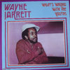 WAYNE JARRETT what's wrong with the youths LP