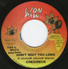 CHEZIDECK don't wait me too long / nine eleven version