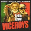 THE VICEROYS get to know / BDF & JAMTONE assaulting dub