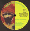 COS TAFARI wilderness - dub / do you remember - REGGAE REMEDY RIDDIM SECTION version