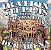IRATION STEPPAS meets TENASTELIN in the dub arena dubl mix LP