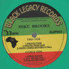 MIKE BROOKS protection - dub -prides come before a fall / pride in dub - jah never fail - dub
