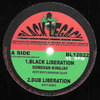 DONOVAN KING JAY black liberation - KEETY ROOTS dub / great steve biko - dub