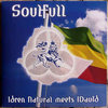 IDREN NATURAL meets I DAVID soulfull
